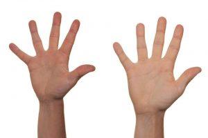 כפות ידיים
